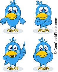 Blue Birds Chicks, Set