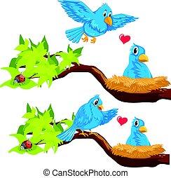 Blue birds in the nest