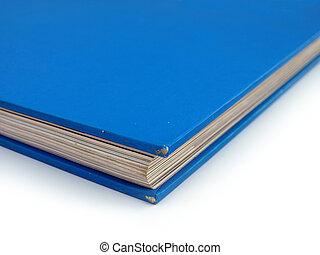 Blue Book Corner Detail Democrat Politics concept