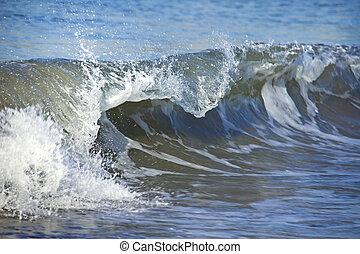 Blue breaking curled shorebreak wave