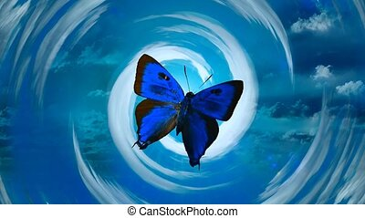 Blue butterfly in clouds