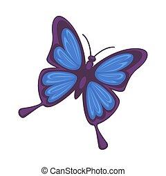 Blue butterfly isolated on white background. Morpho rhetenor