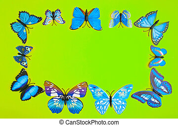 Blue butterfly on green background