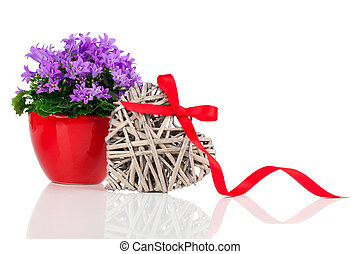 blue campanula flowers for Valentine's Day with wooden heart...