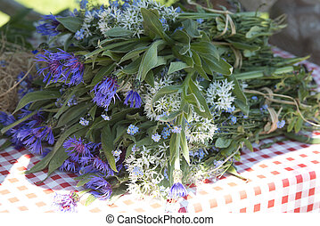 Blue Centaurea and wild garlic