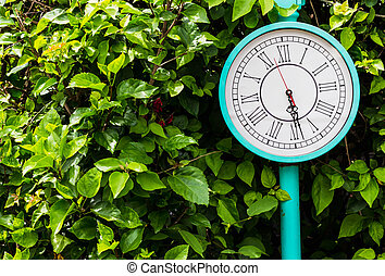 Blue clock pole vintage style with green bush background