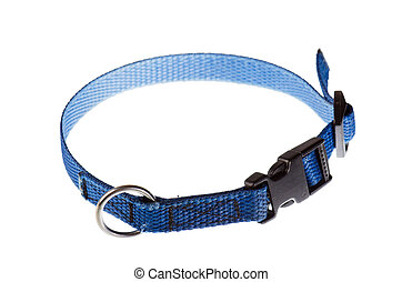 blue collar for a small dog that is isolated on white