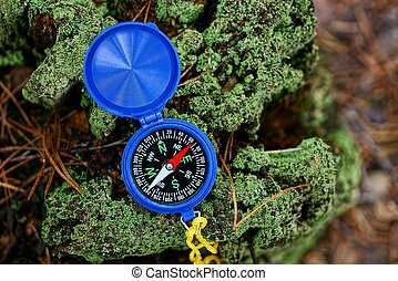 blue compass lies on a green stump in the forest