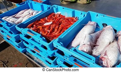 Blue containers with catch of sea fish delicacies - Blue...