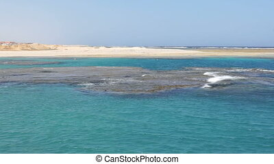 blue coral sea in egypt