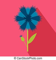 Blue cornflower icon, flat style