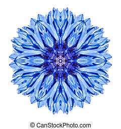Blue Cornflower Mandala Flower Kaleidoscope Isolated on...