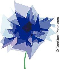 Blue cornflower on white background