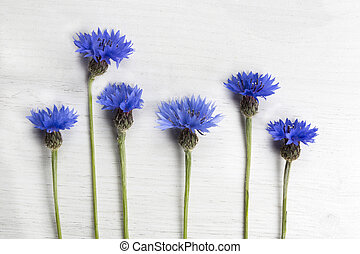 Blue cornflowers on a white wooden background