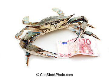 Blue crab holding a banknote