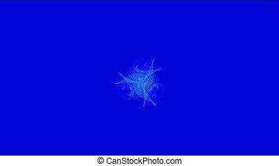 blue dancing jellyfish,mystery unde