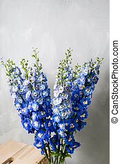 Blue delphinium flower with green leaves on light gray background