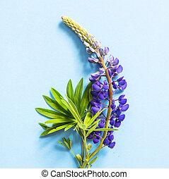 Blue delphinium flowers on a bright blue background