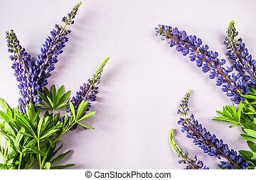 Blue delphinium flowers on a purple background