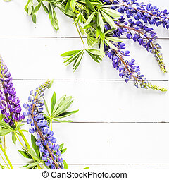 Blue delphinium flowers on a white wooden table