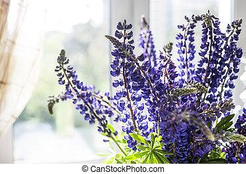 Blue delphinium flowers on the windowsill