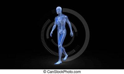 Blue digital human walking on a dark background