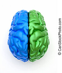 Blue end green brain - Conceptual image of a blue end green...