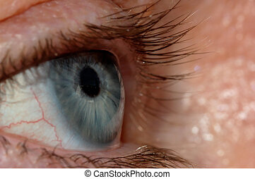 Blue Eye - A blue eye with a window view reflection in it.