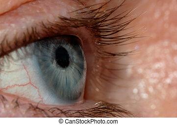 Blue Eye - A blue eye with a window view reflection in it.