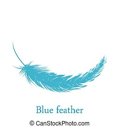 Blue feather falling from the sky