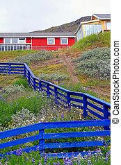 Blue Fence - A blue fence in Narsuaq, Greenland