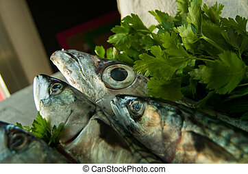 blue fish freshly caught great for a healthy diet