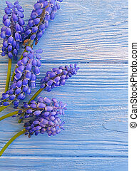 blue flowers on wooden background