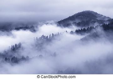 Blue fog in Carpathians