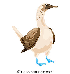 Blue footed booby icon, cartoon style - Blue footed booby...