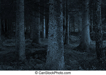 blue forest - Spooky forest with conifers in shades of blue