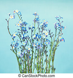 Blue Forget-Me-Not flowers on a light blue background