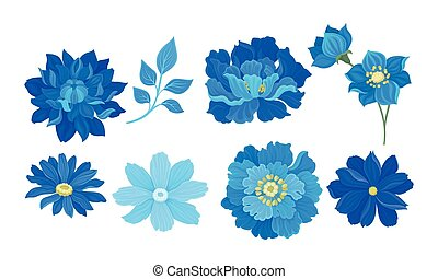 Blue Full-blown Flowers and Leaves Decorative Elements ...