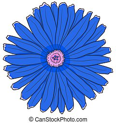 Blue gerbera. Vector illustration. Drawing by hand.
