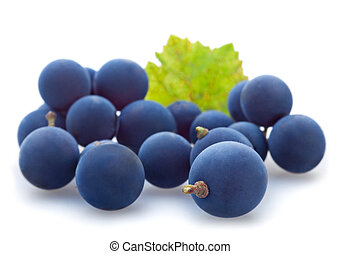 Blue grape berry