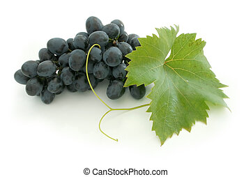 Blue grape cluster - Isolated dewy grape cluster and leaf