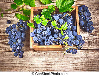 Blue grapes in box with willow