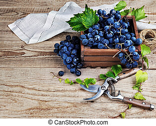 Blue grapes in wooden box