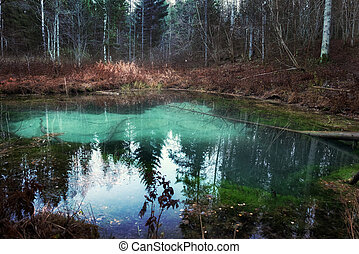 blue heart fo dark forest