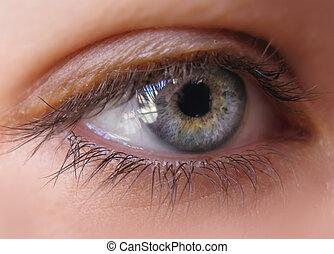 Blue iris eye in a macro picture. Closeup
