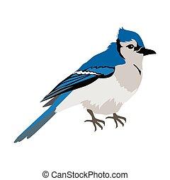 Blue Jay Flat Design Vector Illustration