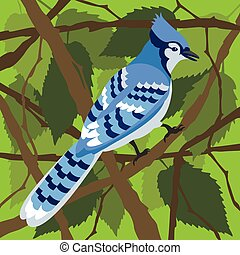 Blue Jay in a Tree - The boldly patterned North American...