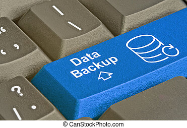 Blue key for data backup
