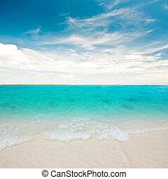 Blue lagoon tropical summer resort