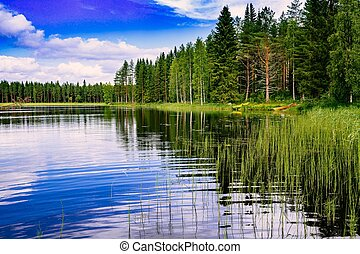 Blue lake and green forest on a sunny summer day in Finland